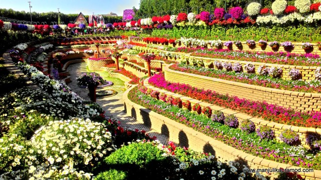 Flower beds, Terraces, Dubai Miracle Garden, Dubai, Travel