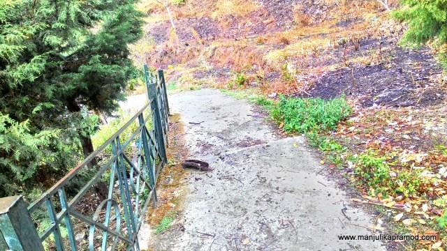 Nature Walk in India