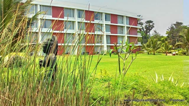 Vishakhapatnam,Andhara Pradesh, Travel, tourism, India, Travel blogger