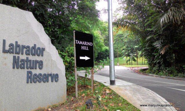 Labrador Nature Reserve, Tamarind Hill, Singapore, Green Parks