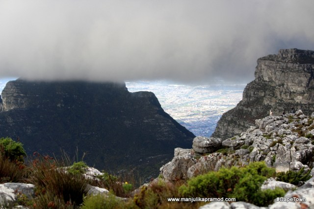Table cloth of Table Mountain