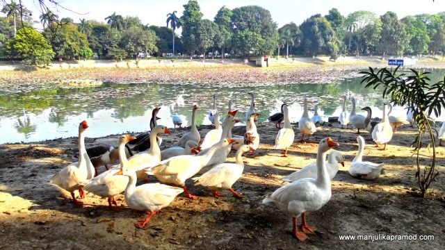 Moti lake, Kanpur, Cities of Uttar Pradesh