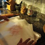 Dehydrated Turkey Treat Recipe - Place Wax Paper Over Meat