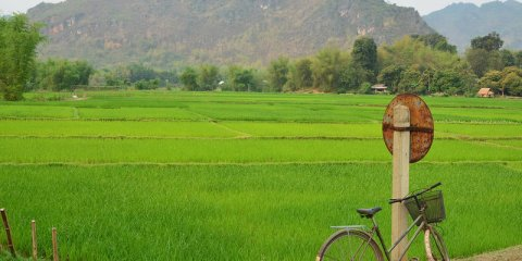 Explore Vietnam on Your Next Bicycle Holiday