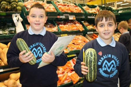 Farm to Fork24