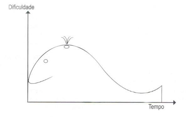 curva da baleia