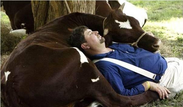 'Conversa pra boi dormir' a ida de Amaral pra Cultura