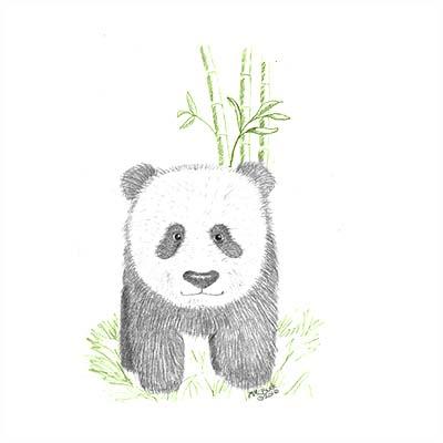 panda1400400