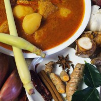 Malaysian Chicken Curry - Nyonya Chicken Curry