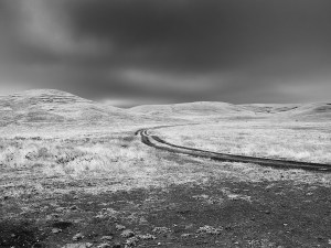Road to Nowhere bw
