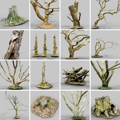 Photorealistic Forest 3D model collection overview