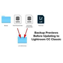 Small Crop Of Lightroom Smart Previews