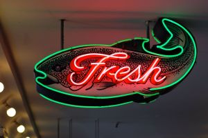 freshness genesis life