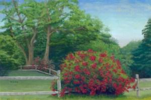 Rail Roses     12×18