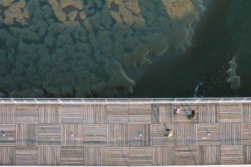 bridge-jetty-landing-stage-5115-733x550