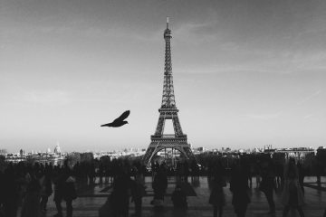 black-and-white-city-bird-people-large