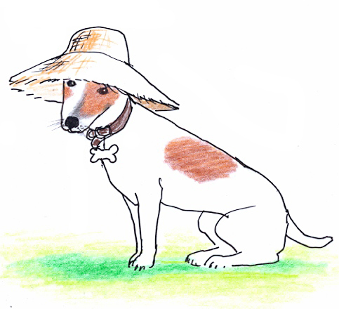 Henry in a sunhat
