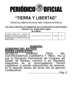 Diario Oficial Tierra y Libertad Planchado