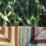 Miters of the Corn - 1