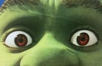 shrek-eyes-_-ged-carroll-_-flickr