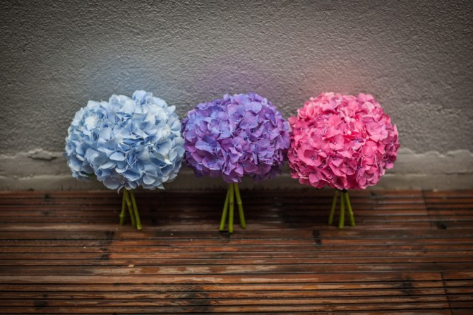 Hydrangea Flower Bouquets for Bridesmaids - A City of London Wedding