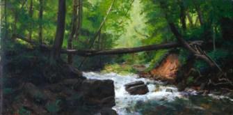 Dundas Vallery, Webster's Falls