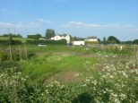 Maulden Allotments. Spring 2014