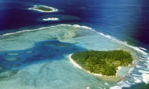 Middle Brother Island in the Chagos Archipelago