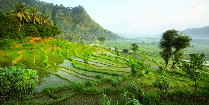 bali_landscape