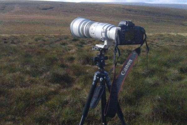 small canon 500