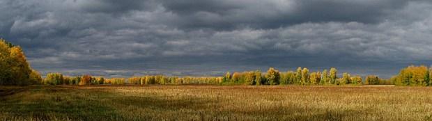 September Autumn Fields (MCRFB)