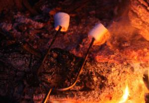 Nightly Campfires at Meadowbrook Resort & Dells Packages in Wisconsin Dells