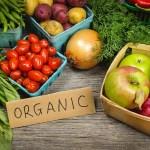 Sayuran Organik – Budaya Sehat Dengan Menu Hijau