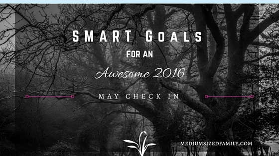 My S.M.A.R.T. Yearly Goals – May Check In