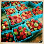 The Betty Crocker Project : Adventures with Strawberries &amp; Rhubarb