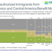 Breakdown of Immigrant Eligibility by Country of Origin in a Marimekko Chart