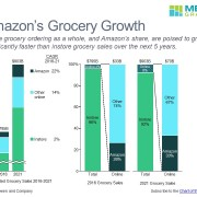Projected Grocery Sales by Category in a Series of Bar Charts