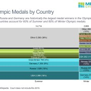 Breakdown of Medals For Summer and Winter Games by Country in a Marimekko Chart