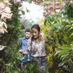 The garden in the Shack