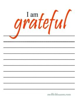 Gratitude Journal download