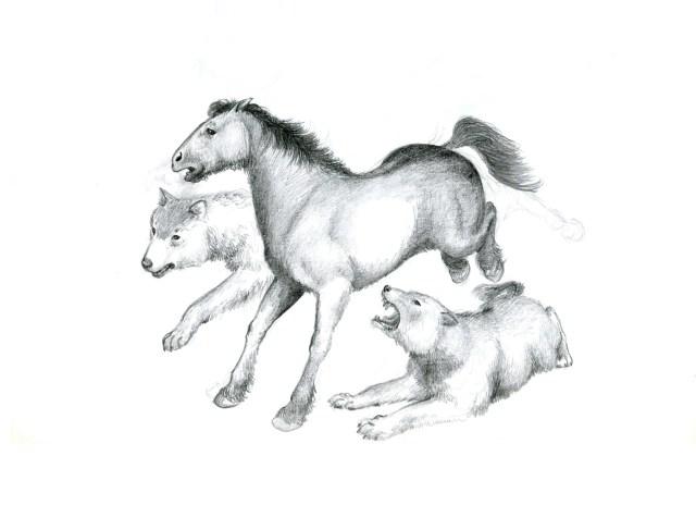 horsewolves