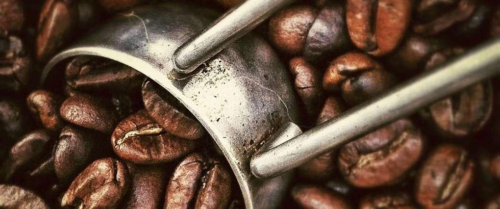 beans-coffee-fresh-2065