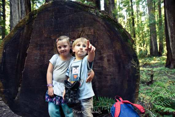 Meriah Nichols Redwoods-46