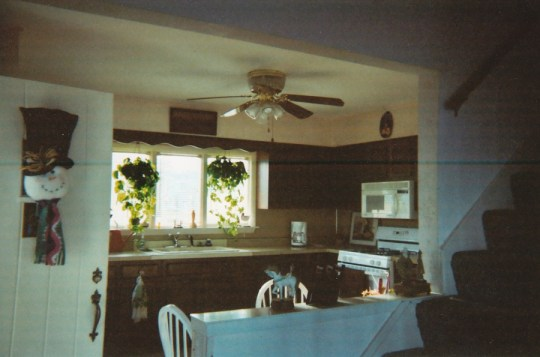 Before: Kitchen upon move-in. Circa 2004.