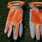 New gloves!