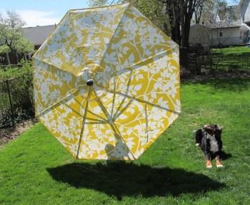 New Crate & Barrel Deck Umbrella