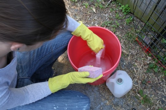 TSP prep in a clean bucket in the driveway.