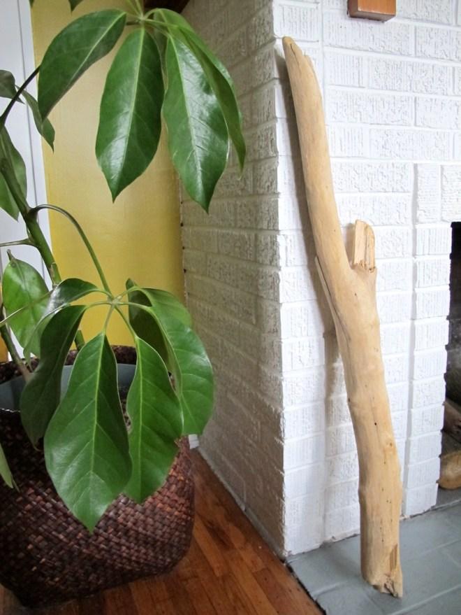 DIY driftwood hook tutorial on DIY Network.