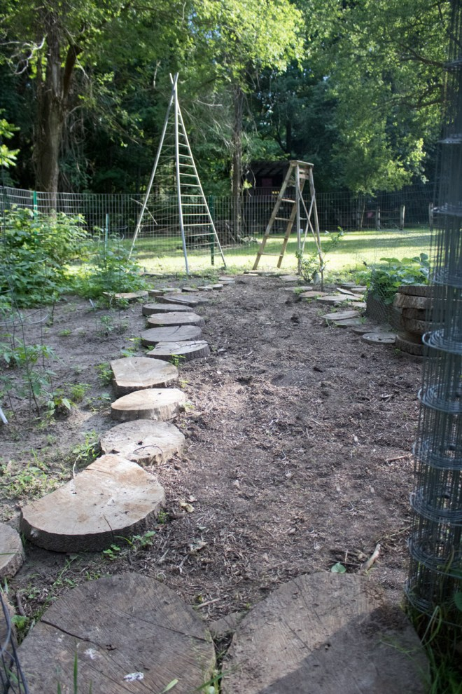 A natural garden pathway using logs and mulch.