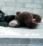 Bear mattress alley